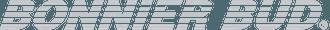 Bonnier bud Logo